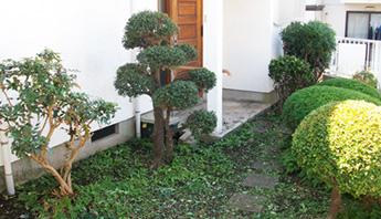 草刈り・庭木カット